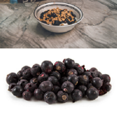 Freeze dried fruit suppliers